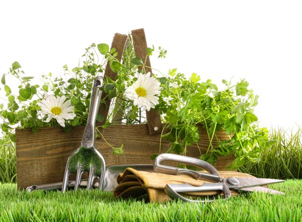 绿色田园生活素材