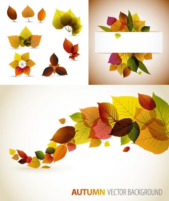 秋天树叶矢量素材