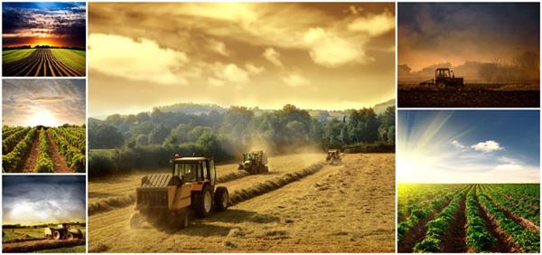 农场图片素材