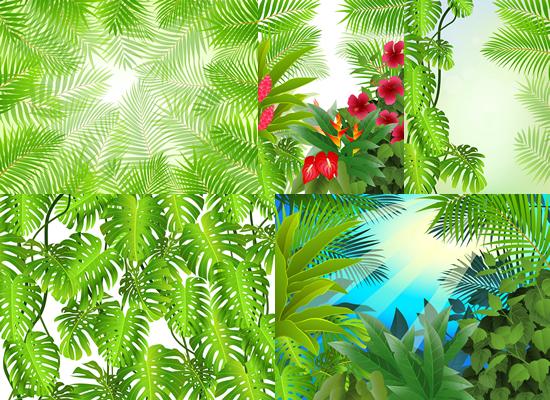热带植物矢量-花草树木矢量图库-名片之家