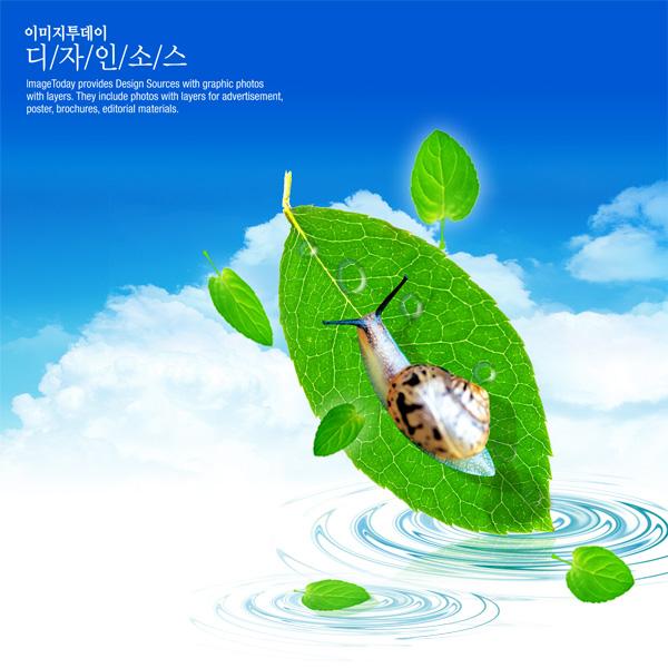 蜗牛树叶蓝天