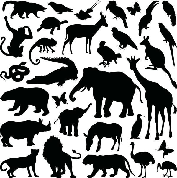动物剪影矢量-矢量图库-名片之家