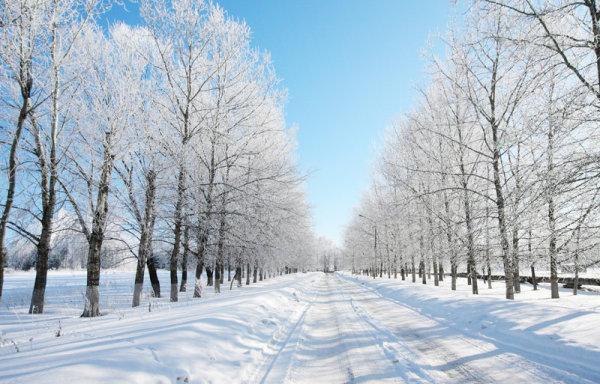冬季美景5-自然风景高清图库-名片之家