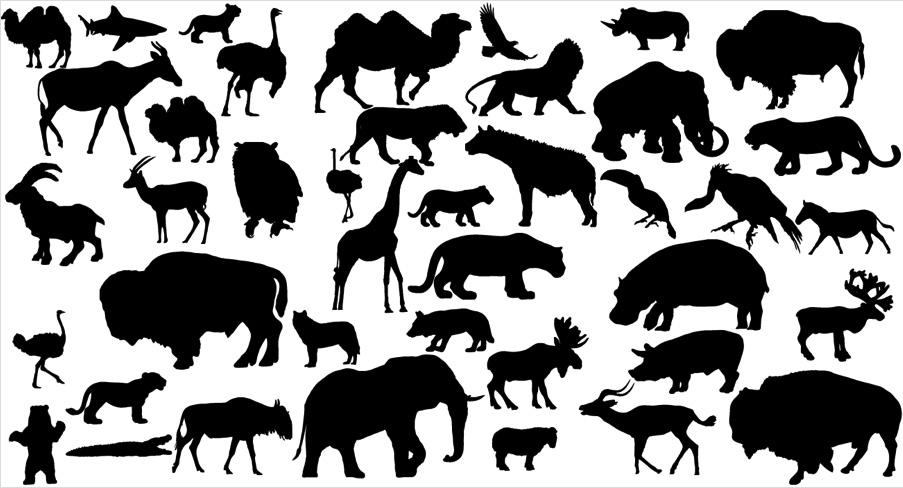 矢量动物剪影