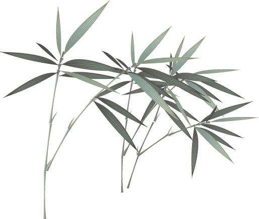 古风风景竹子头像