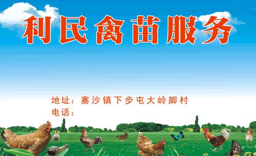 利民禽苗服务名片_利民禽苗服务名片模板免费下载
