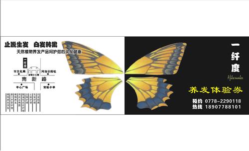 昆虫名片设计图画