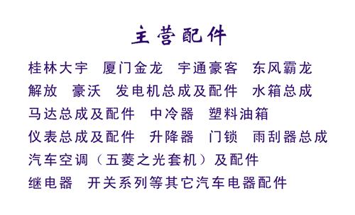 柳州林雅汽车电器总汇名片模板免费下载