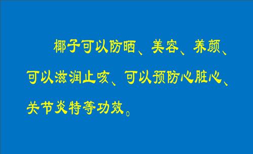 海南文昌椰子协部名片专业免费下载山东单招室内设计模板图片