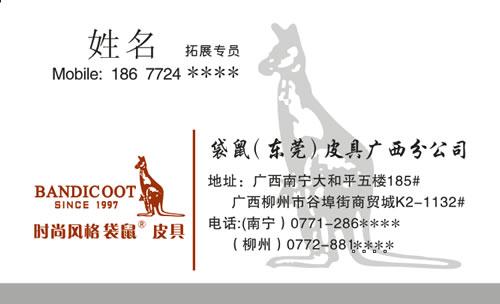 袋鼠(东莞)皮具广西分公司名片设计欣赏