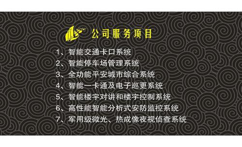 广西柳州金卫安防科技有限责任公司名片模板免费下载