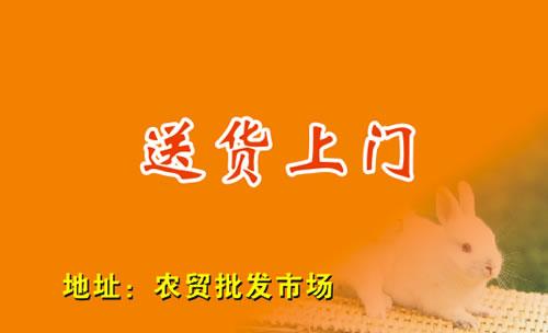 模板类型: 个性名片 模板介绍: 此名片是关于橙色底色,小兔子,送货