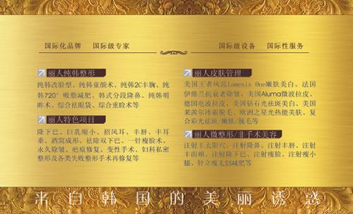 柳州丽人纯韩整形国际连锁名片模板免费下载